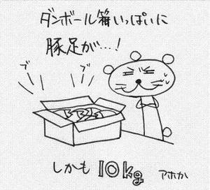 Img_11